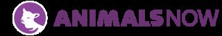 animals-now-logo